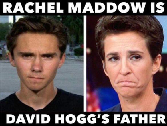 Maddow Hogg