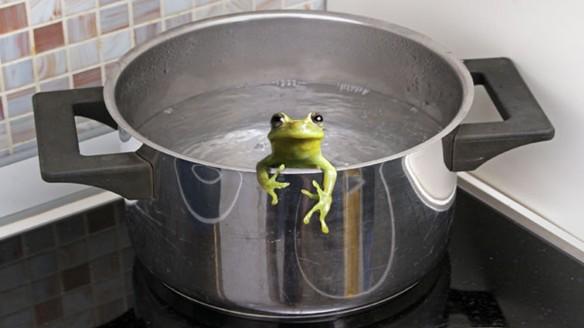 frog.boiling-pot